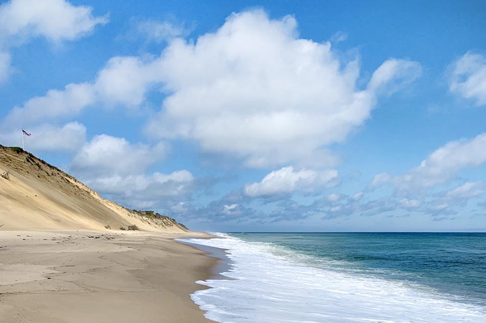 Wellfleet_beach_dunes (1)