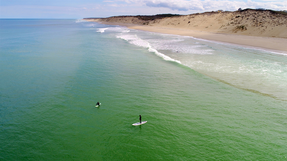 Wellfleet_beach_paddle-board