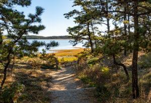 Great Island Trail 1